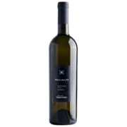 Il Diamante-verdicchio-partner wine