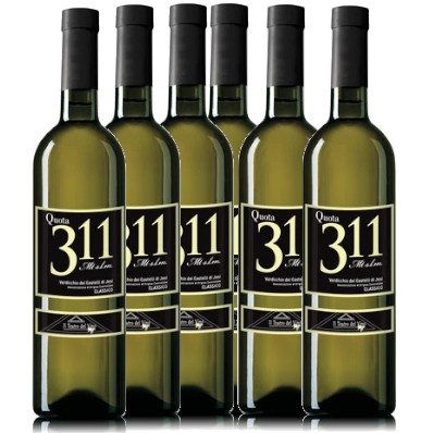 Offerta 6 bottiglie Verdicchio Quota 311
