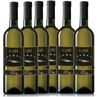 Offerta 6 bottiglie Falerio 4 Lune Il teatro del vino