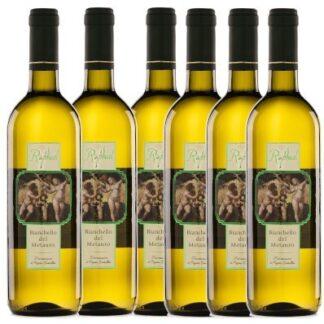Offerta 6 bottiglie Bianchello del Metauro Raphael Piersanti